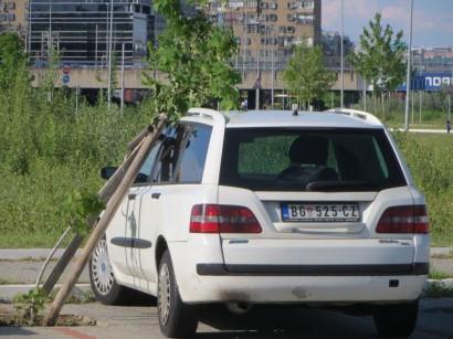 Belgrad_Kampf-der-Technik-Die-Natur-holt-sich-ihren-Platz-zurück.jpg