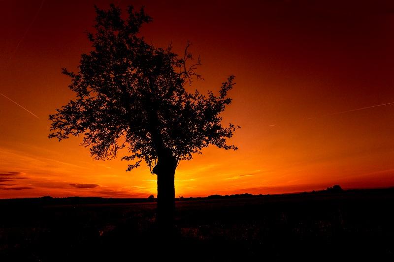 feuerroterSonnenuntergang.jpg